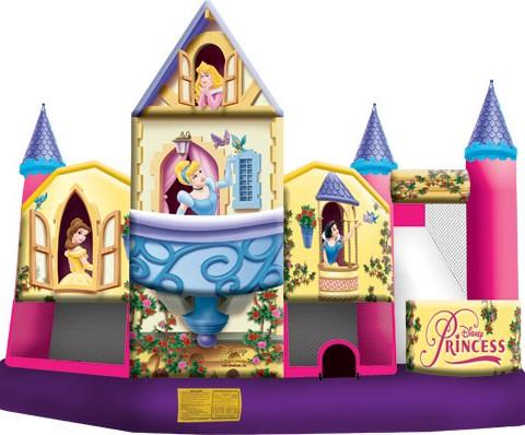 Disney Princess 5 in 1